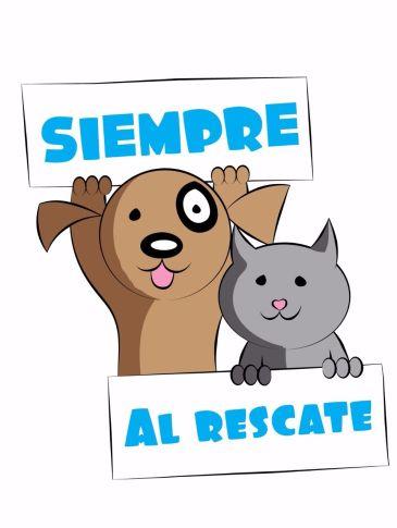 logo FUNDACION SIEMPRE AL RESCATE1